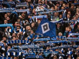 Fans schreiben Offenen Brief an den HSV