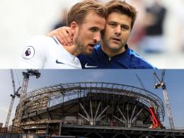 Weil es nicht regnet, wird es skurril: Tottenham im Check