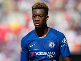 Chelsea-Trainer Sarri verteidigt Umgang mit Hudson-Odoi