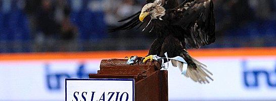 """Zieht am Sonntag erstmals vor dem Derby seine Kreise: Lazio-Adler """"Olimpia""""."""
