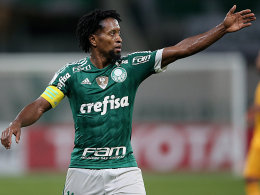 Zé Roberto (Palmeiras)