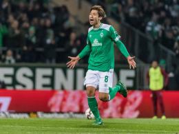 Japan mit Bundesliga-Trio beim Asien-Cup - Kagawa fehlt