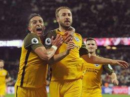 Murray schießt Brighton zum 3:0-Sieg