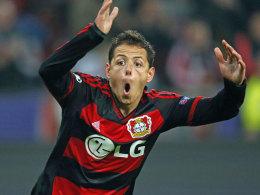 Ist er auch in Baryssau Bayers Lebensversicherung? Leverkusens Stürmer Chicharito.