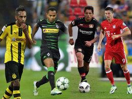 Revanche f�r Bayern? Hammerlose f�r Gladbach!