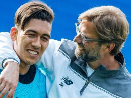 Liverpool! Hoffenheim trifft auf Klopp und Firmino