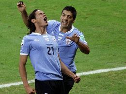 Vergleich der Salto-Kämpfer - Thiago Silva in Fanrolle