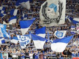 Schalke wundert sich über Minuskulisse