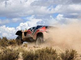 Sebastien Loeb im Peugeot
