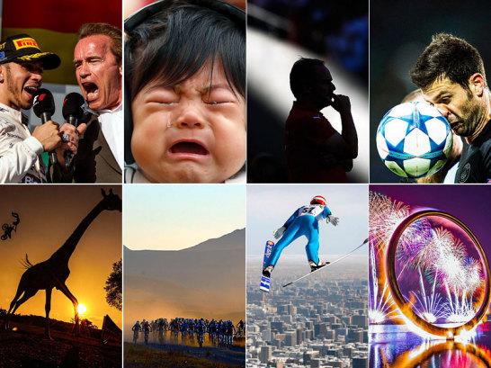 Das Sportjahr 2015 bot auch abseits von Ergebnissen, Tabellen und Meisterschaften viele spektakuläre Moment. Weltweit liegen deswegen die Fotografen auf der Lauer, um den ganz besonderen Augenblick festzuhalten. Witzig, spektakulär und oder einfach nur schön.
