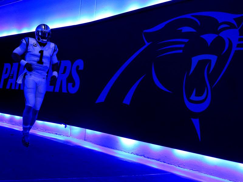 Die Stars der Carolina Panthers