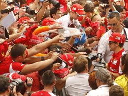 Die Fans greifen nach ihm, greift er nach dem Titel? Fernando Alonso (re.).