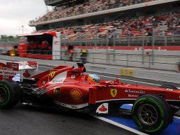 Zwei Zehntelsekunden schneller als Teamkollege Massa: Fernando Alonso am Freitag in Barcelona.