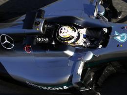 Peilt den Titel-Hattrick an: Mercedes-Pilot Lewis Hamilton.