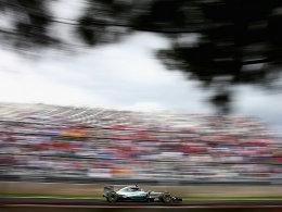 Rosberg f�hrt sich in den Vordergrund
