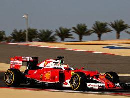Vettel im letzten Training vorn - Rosberg Dritter