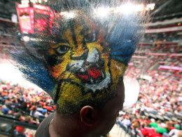 Ein Fan der Florida Panther