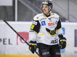 Straubing holt Williams aus Schweden