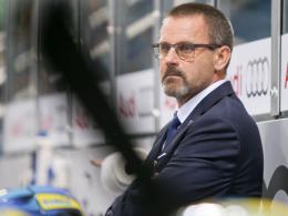 ERC Ingolstadt feuert Trainer Samuelsson