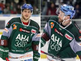 Polaczek und Rekis bleiben in Augsburg