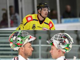 DEL-Splitter: KEV hält Mieszkowski, AEV beide Keeper