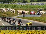 Bilder zur 102. Tour de France