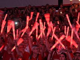 Meister Bamberg spielt Euroleague, Bayern Eurocup