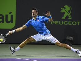 Miami: Nishikori fordert Rekordjäger Djokovic