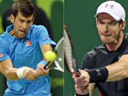 Traumfinale in Doha: Djokovic fordert Murray