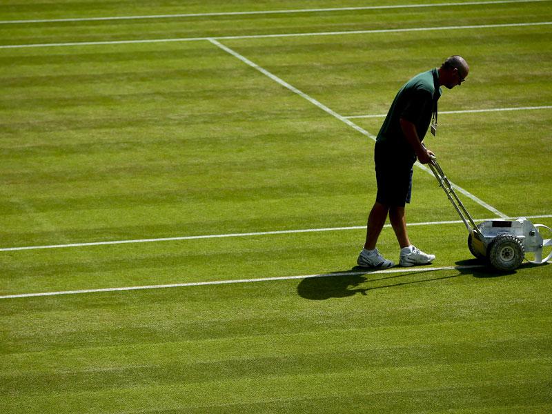 Serenas siebter Streich - Graf gratuliert