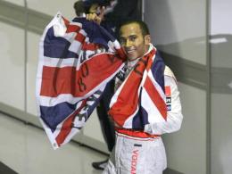 In Sao Paulo werden Weltmeister gekürt: Lewis Hamilton strahlte im vergangenen Jahr.